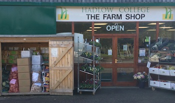 Hadlow College Farm Shop